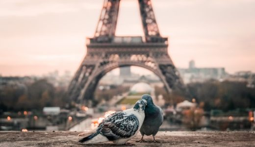 フランス語で『ありがとう』は?知っておきたい旅行仏語&英語20選
