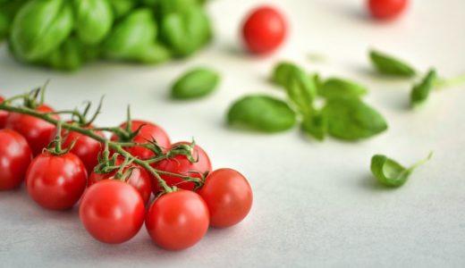 【かんたん】おいしいミニトマトの育て方【プランター栽培】