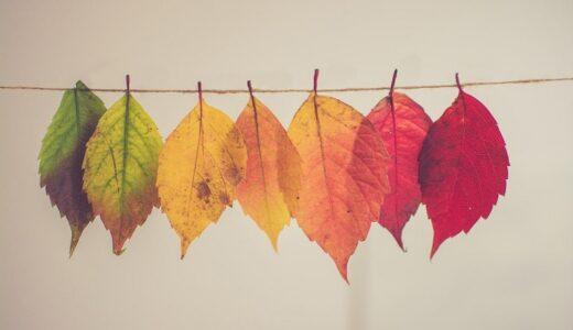 フランス語で『春・夏・秋・冬』ってなんて言うの?季節の表現まとめ